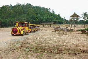 Cафари-парк Гуанчжоу