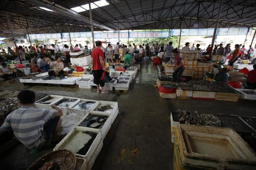 Рынок сельскохозяйственной продукции №1
