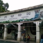 Поездка в Гуанчжоу: виды дневного и вечернего отдыха