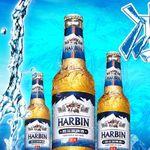 Пиво Харбин